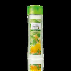 Oriflame 22701 - Dầu gội Nature Secrets Shampoo for Greasy Hair Nettle & Lemon (22701 Oriflame)